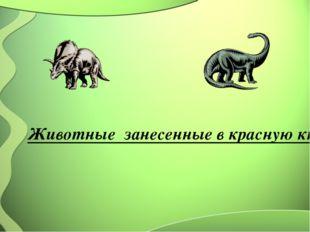Животные занесенные в красную книгу Казахстана