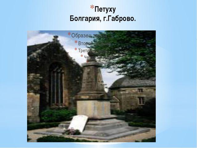 Петуху Болгария, г.Габрово.