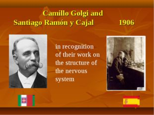 Camillo Golgi and Santiago Ramón y Cajal 1906 in recognition of their work on
