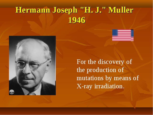 """Hermann Joseph """"H. J."""" Muller 1946 For the discovery of the production of mut..."""