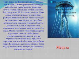 Тело медуз по форме напоминает колокол или зонтик. Такое строение обеспечивае
