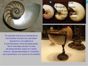 Из раковин наутилуса помпилиуса изготовлено множество красивых предметов, на