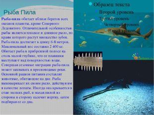 Рыба Пила Рыба-пилаобитает вблизи берегов всех океанов планеты, кромеСеверн
