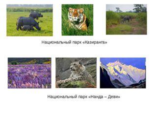 Национальный парк «Казиранга» Национальный парк «Нанда – Деви»