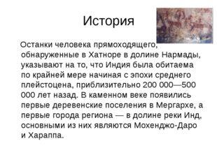 История Останки человека прямоходящего, обнаруженные в Хатноре в долине Нарма