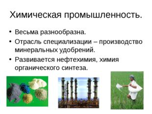 Химическая промышленность. Весьма разнообразна. Отрасль специализации – произ