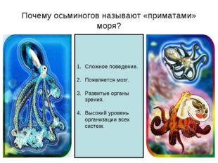 Почему осьминогов называют «приматами» моря? Сложное поведение. Появляется мо