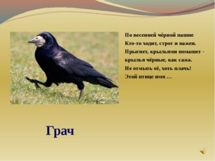 По весенней чёрной пашне Кто-то ходит, строг и важен. Прыгнет, крыльями пома