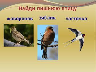 Найди лишнюю птицу жаворонок зяблик ласточка