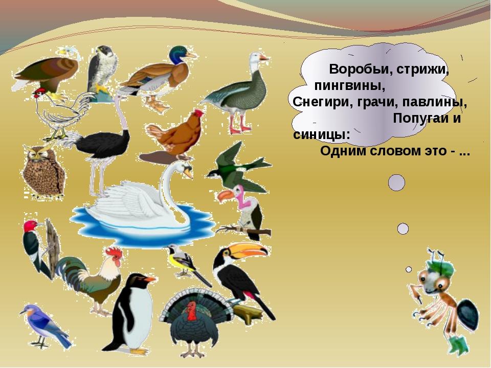 Воробьи, стрижи, пингвины, Снегири, грачи, павлины, Попугаи и синицы: Одним...