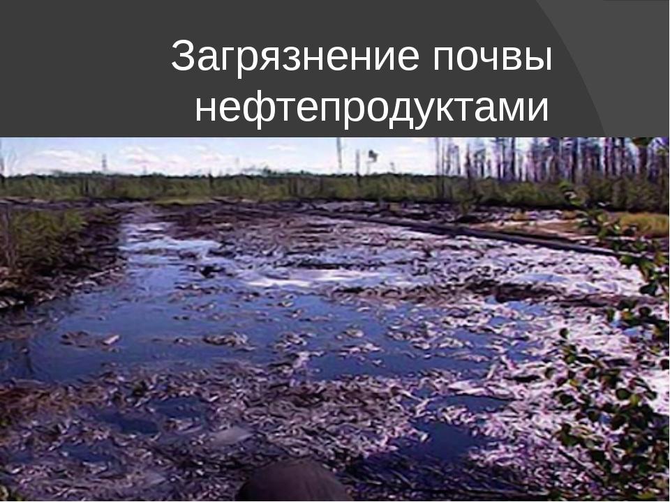 Загрязнение почвы нефтепродуктами