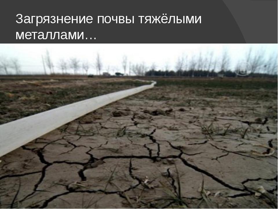 Загрязнение почвы тяжёлыми металлами…
