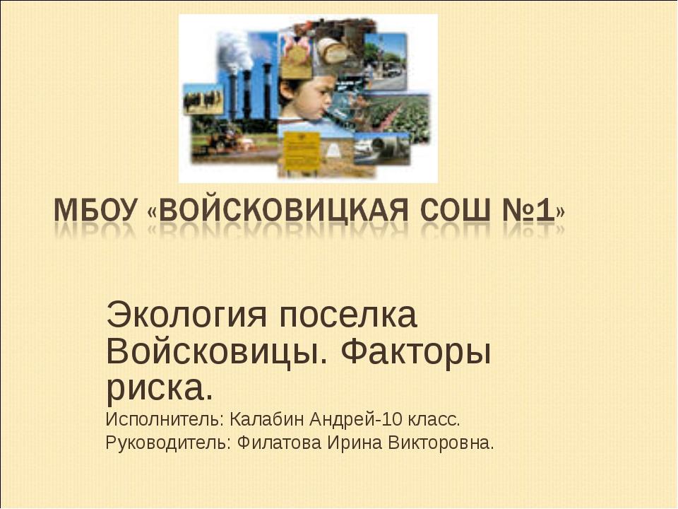 Экология поселка Войсковицы. Факторы риска. Исполнитель: Калабин Андрей-10 кл...