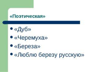 «Поэтическая» «Дуб» «Черемуха» «Береза» «Люблю березу русскую»