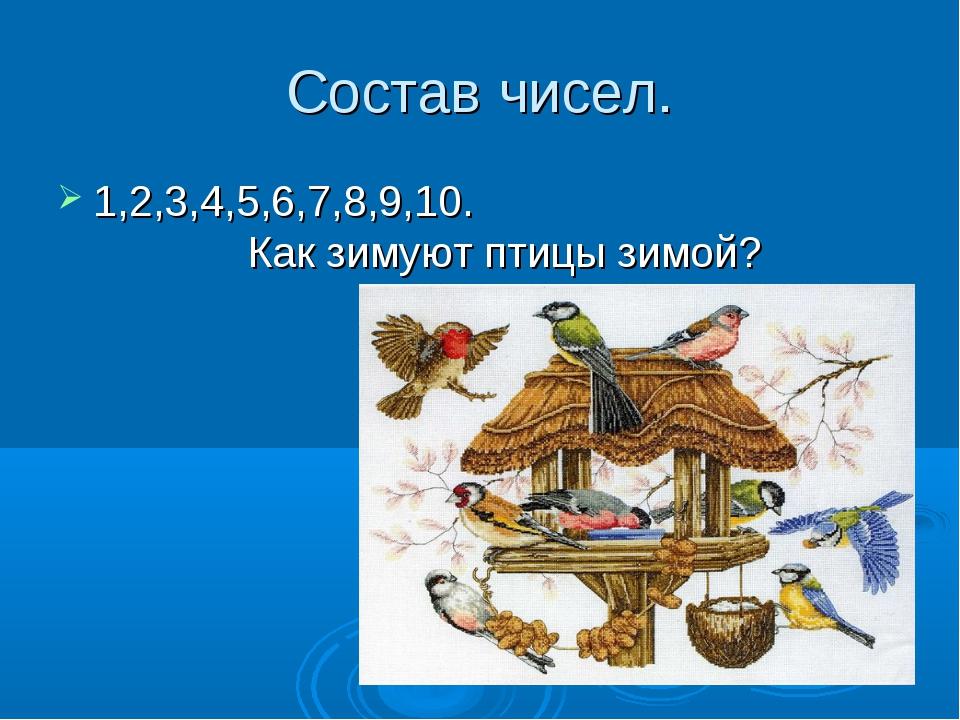 Состав чисел. 1,2,3,4,5,6,7,8,9,10. Как зимуют птицы зимой?