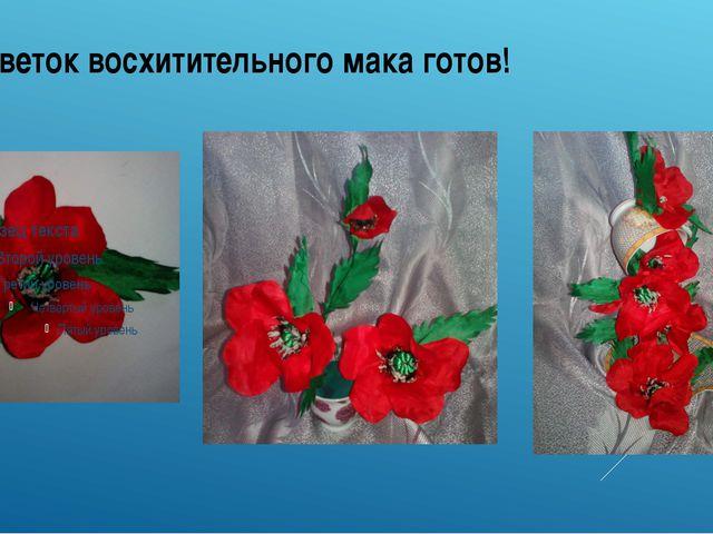 Цветок восхитительного мака готов!