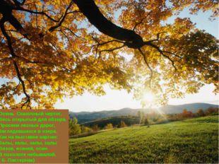 Осень. Сказочный чертог, Весь открытый для обзора. Просеки лесных дорог, Загл