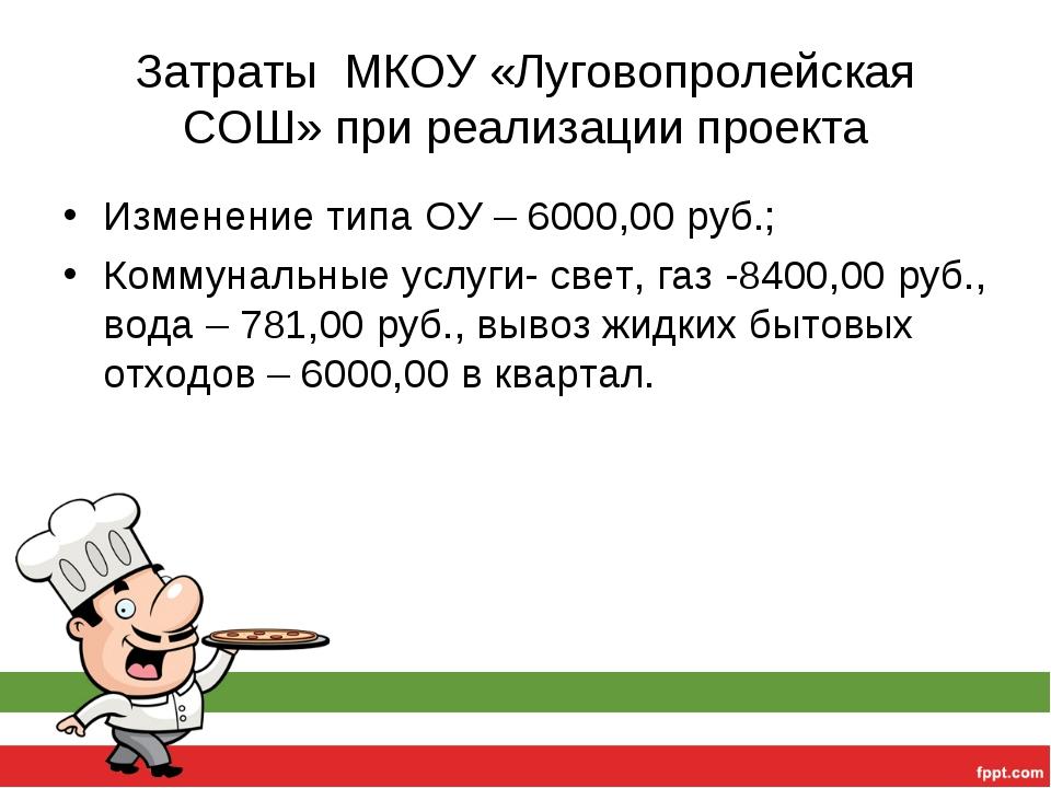 Затраты МКОУ «Луговопролейская СОШ» при реализации проекта Изменение типа ОУ...