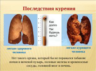 Последствия курения Нет такого органа, который бы не поражался табаком: почки