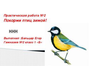 ннн Практическая работа №2 Покорми птиц зимой! Выполнил :Бальцер Егор Гимнази