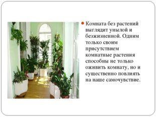 Комната без растений выглядит унылой и безжизненной. Одним только своим прису