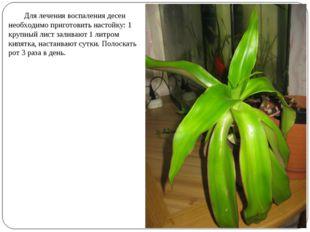 Для лечения воспаления десен необходимо приготовить настойку: 1 крупный лист