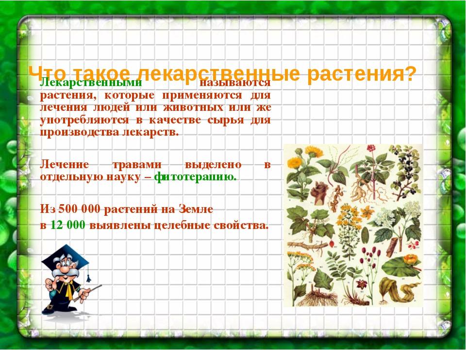 Что такое лекарственные растения? Лекарственными называются растения, которые...