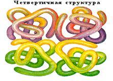 http://festival.1september.ru/articles/565780/img7.jpg