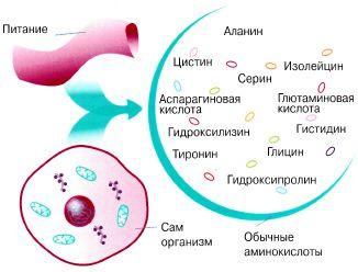 G:\химия карт-и\tmpC9-2[1].jpg