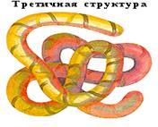 http://festival.1september.ru/articles/565780/img6.jpg