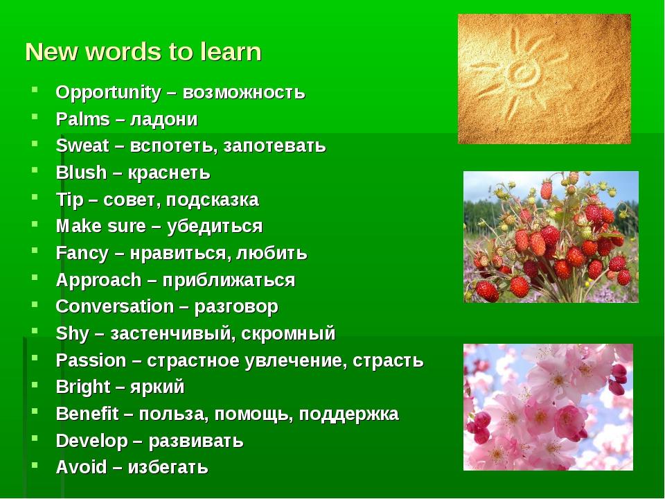 New words to learn Opportunity – возможность Palms – ладони Sweat – вспотеть,...
