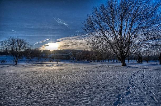 winter00014
