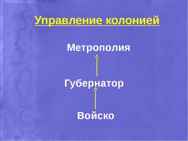 Метрополия Губернатор Войско Управление колонией