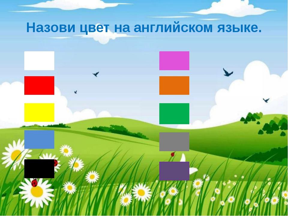 Назови цвет на английском языке.
