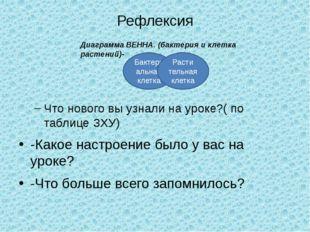 Рефлексия Что нового вы узнали на уроке?( по таблице ЗХУ) -Какое настроение б