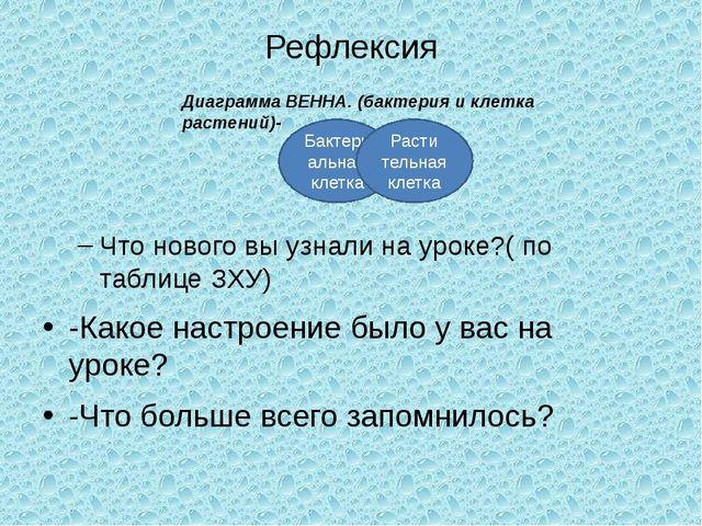 Рефлексия Что нового вы узнали на уроке?( по таблице ЗХУ) -Какое настроение б...