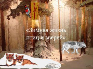 «Зимняя жизнь птиц и зверей».