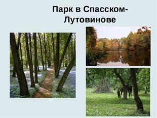 Парк в Спасском-Лутовинове