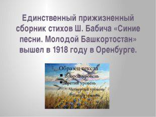 Единственный прижизненный сборник стихов Ш. Бабича «Синие песни. Молодой Башк