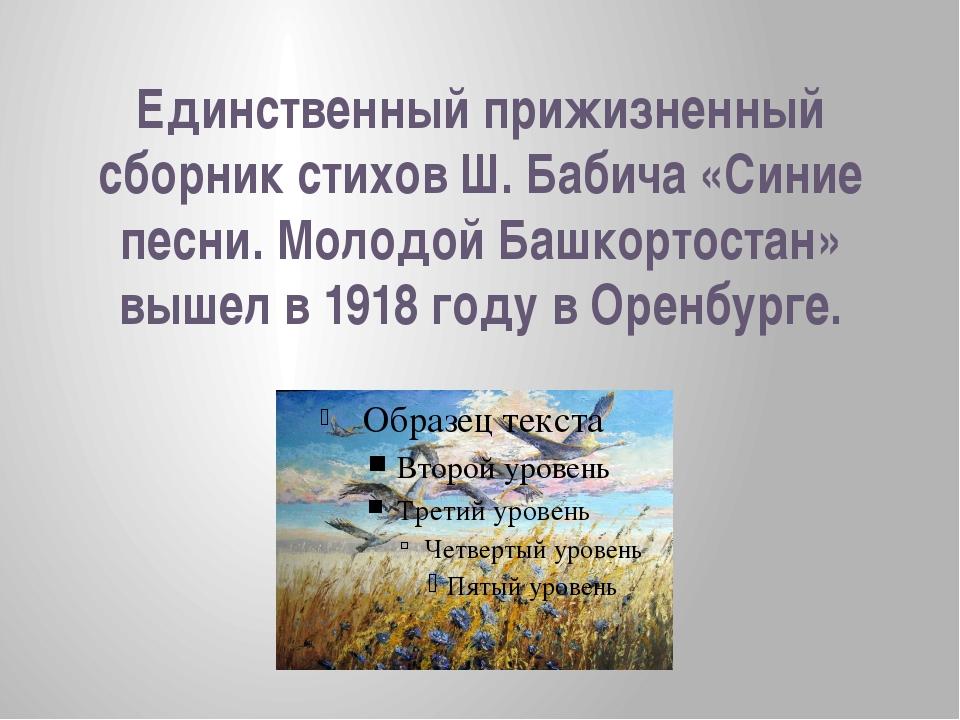 Единственный прижизненный сборник стихов Ш. Бабича «Синие песни. Молодой Башк...