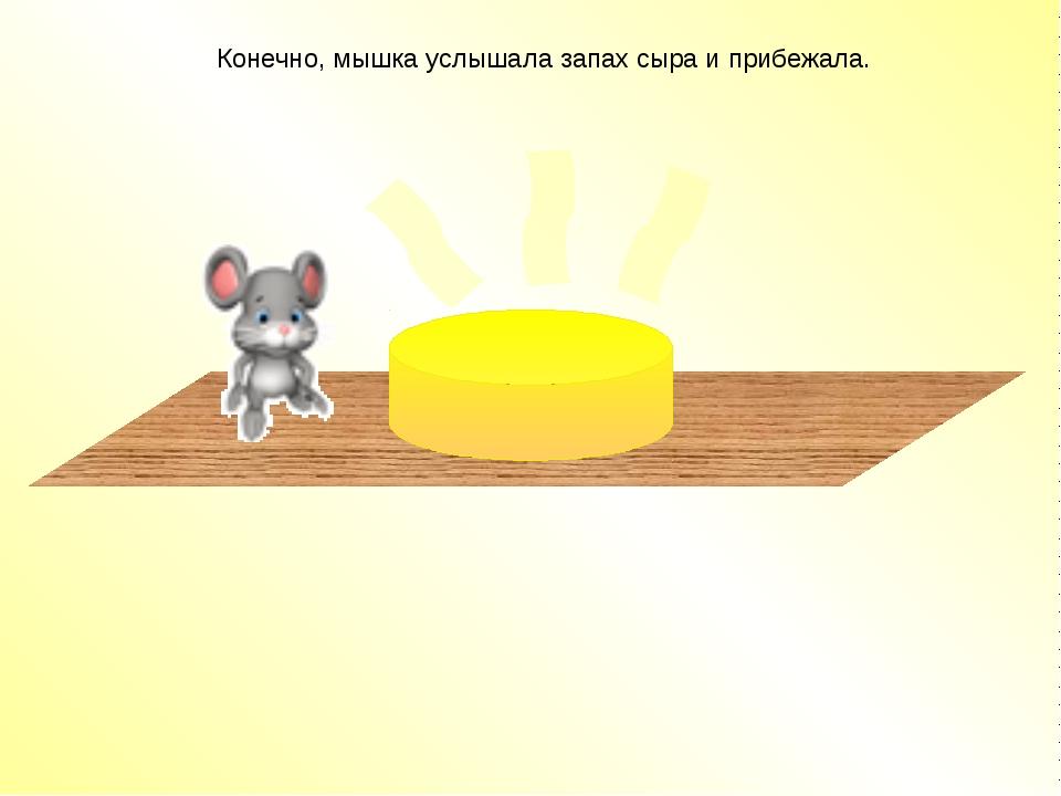Конечно, мышка услышала запах сыра и прибежала.