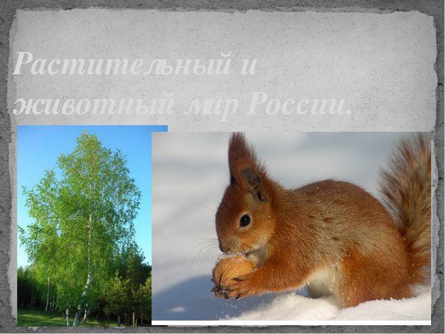 Растительный и животный мир России.