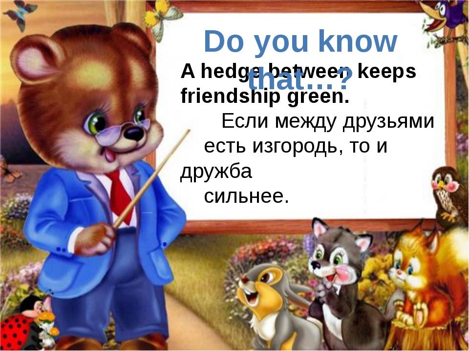 A hedge between keeps friendship green. Если между друзьями есть изгородь, то...