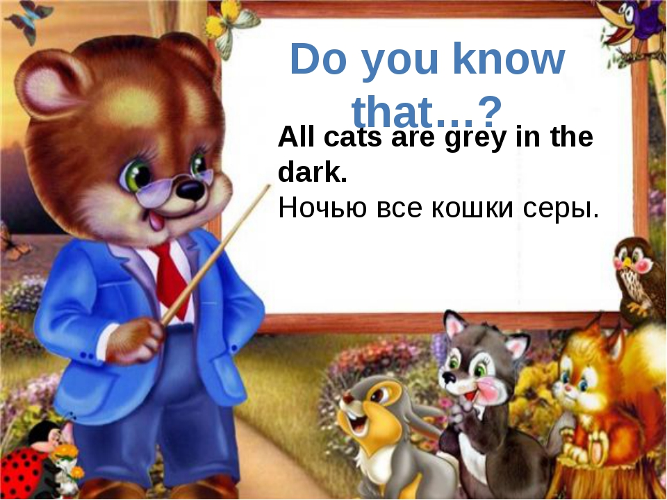 All cats are grey in the dark. Ночью все кошки серы. Do you know that…?