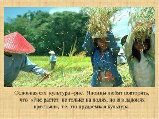 Основная с/х культура –рис. Японцы любят повторять, что «Рис растёт не тольк