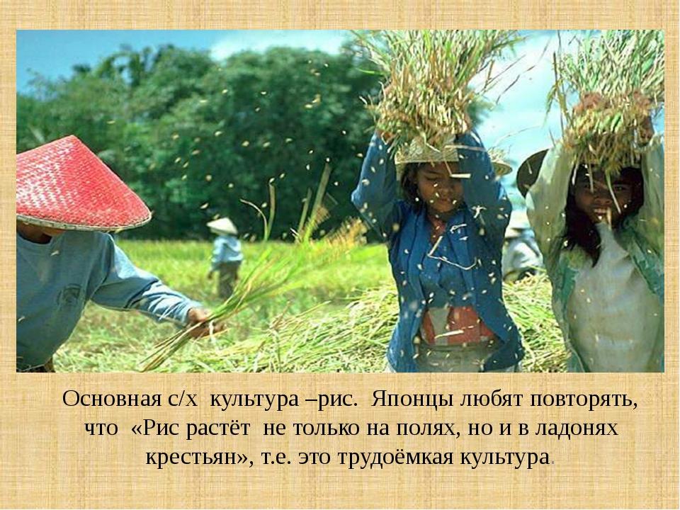 Основная с/х культура –рис. Японцы любят повторять, что «Рис растёт не тольк...