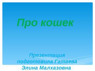 Про кошек Презентация подготовила Гатаева Элина Малхазовна
