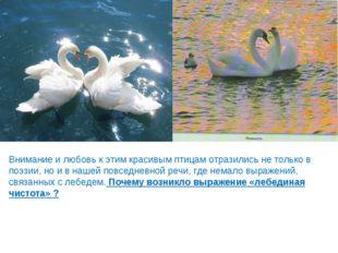 Внимание и любовь к этим красивым птицам отразились не только в поэзии, но и