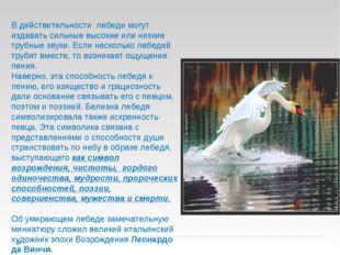 В действительности лебеди могут издавать сильные высокие или низкие трубные з