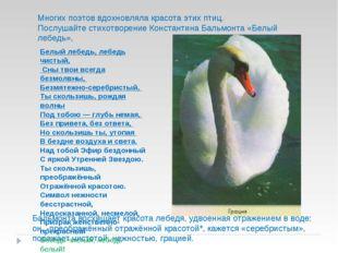 Многих поэтов вдохновляла красота этих птиц. Послушайте стихотворение Констан